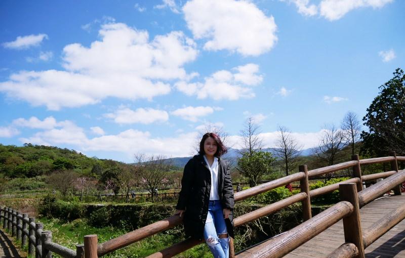 女孩愛旅行!跟毛摳旅遊去 ► 2018三芝賞櫻!悠遊漫步在藍天與櫻花下的大坑溪三生步道!(3/10花況)