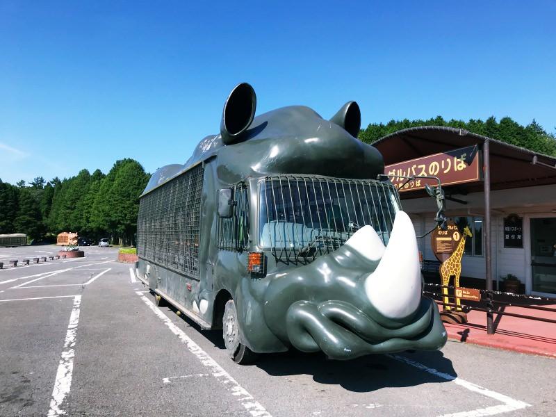 九州自然動物園!和野生動物的近距離相處~搭叢林巴士一起探險餵食去~