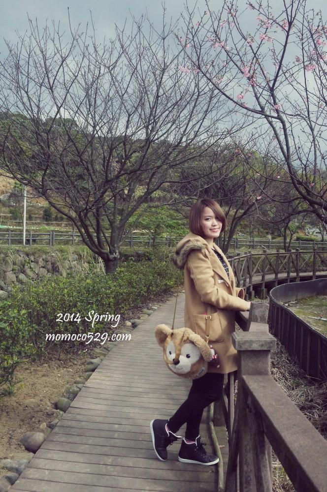 【新北】三芝人賞櫻的私房景點♥超放鬆的三生步道