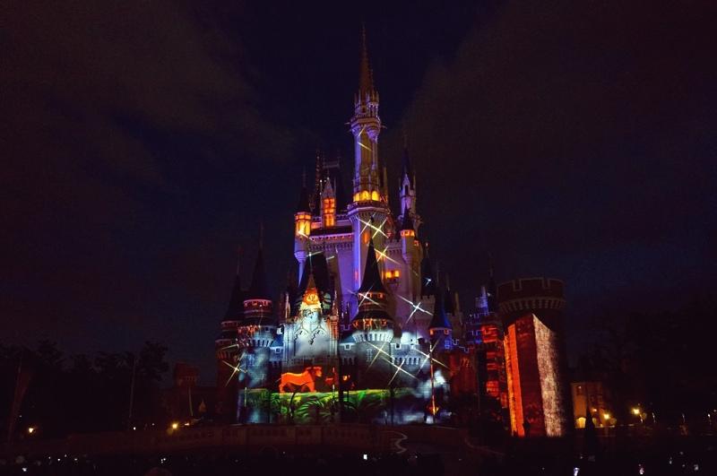 【日本東京迪士尼】樂園的童話之夜~冬季特別版♥浪漫投影秀!